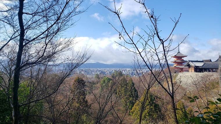 右が清水寺。正面は京都市街